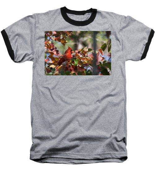 Hiding Away Baseball T-Shirt