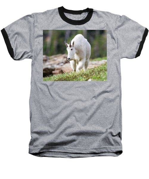 Baseball T-Shirt featuring the photograph High Country Mountain Goat by Jack Bell