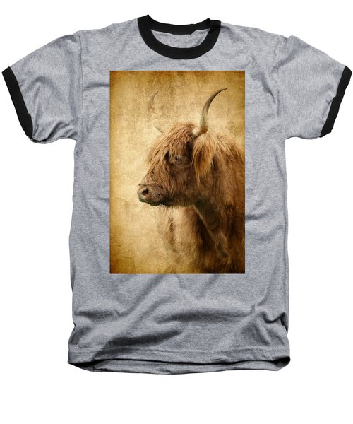 Highland Bull Baseball T-Shirt by Athena Mckinzie