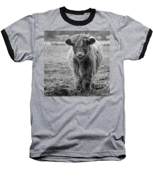 Highland Calf Baseball T-Shirt by Sonya Lang