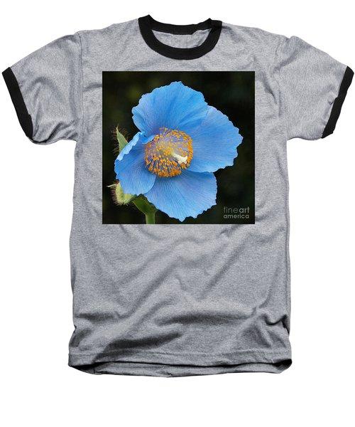 Himalayan Gift -- Meconopsis Poppy Baseball T-Shirt