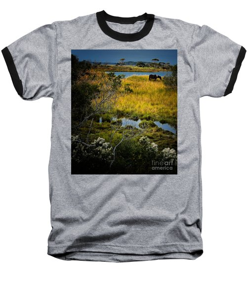 Home On The Range Baseball T-Shirt
