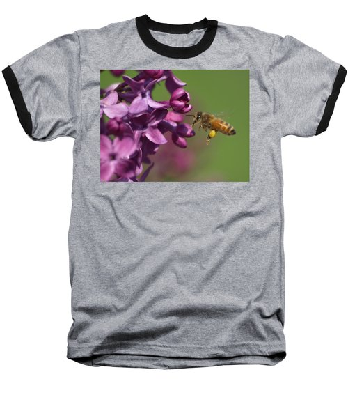 Honey Bee And Lilac Baseball T-Shirt by James Peterson