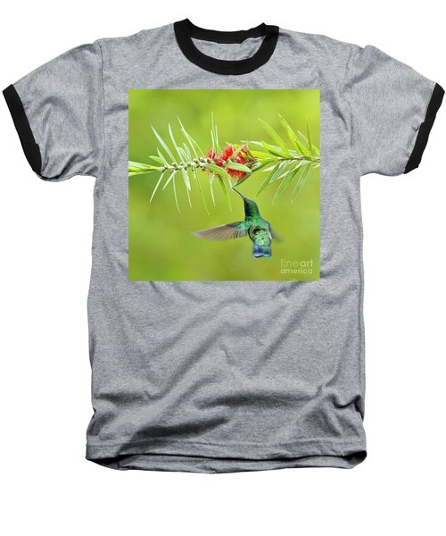 Honey Sucking Baseball T-Shirt
