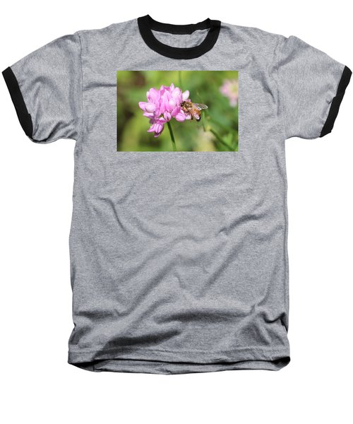 Honeybee On Crown Vetch Baseball T-Shirt