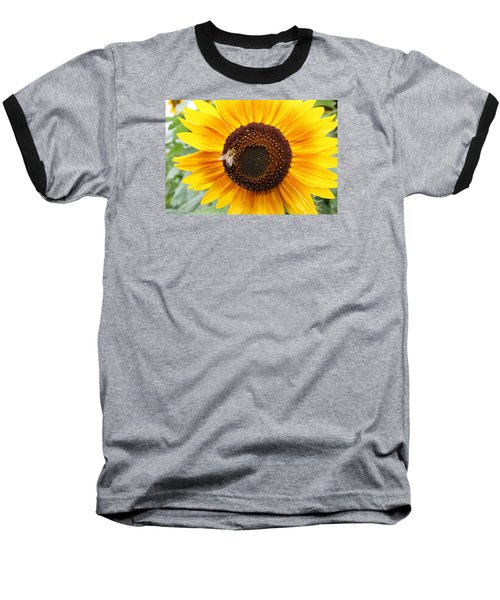Honeybee On Small Sunflower Baseball T-Shirt