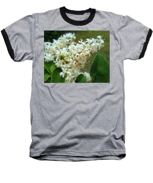 Baseball T-Shirt featuring the photograph Honeysuckle #1 by Robert ONeil