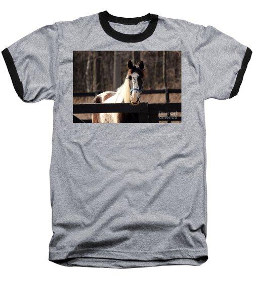 Horse At The Gate Baseball T-Shirt