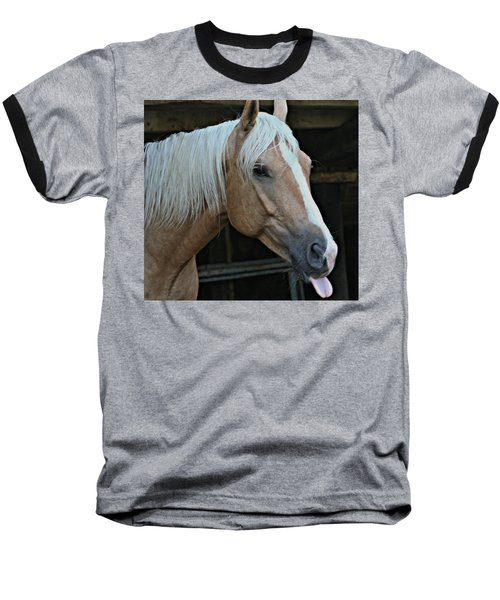 Horse Feathers Baseball T-Shirt