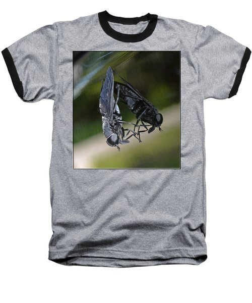 Baseball T-Shirt featuring the photograph Horse Fly by DigiArt Diaries by Vicky B Fuller