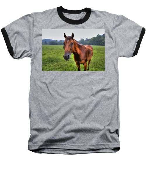 Horse In A Field Baseball T-Shirt