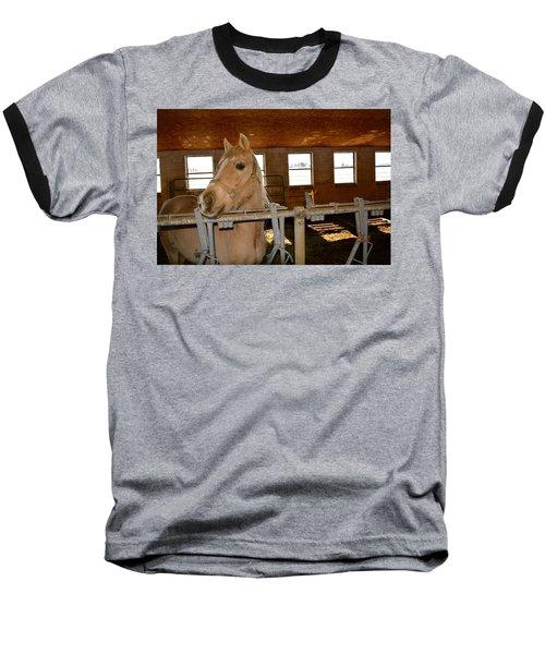 The Amishman's Old Friend Baseball T-Shirt