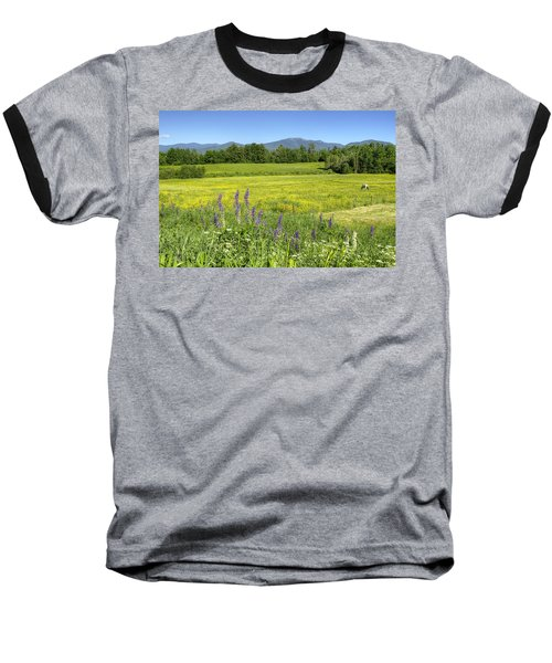 Horse In Buttercup Field Baseball T-Shirt
