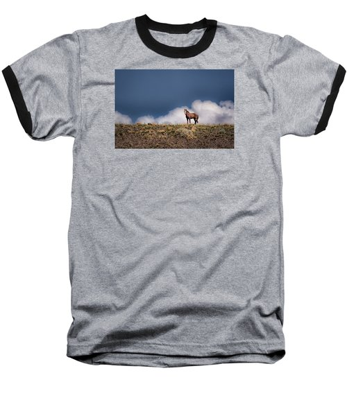 Horse In The Clouds  Baseball T-Shirt
