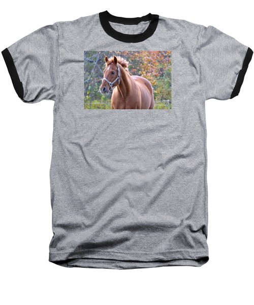 Baseball T-Shirt featuring the photograph Horse Muscle by Glenn Gordon