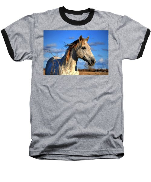 Horse Baseball T-Shirt by Savannah Gibbs