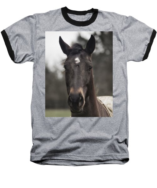 Horse With Gentle Eyes Baseball T-Shirt