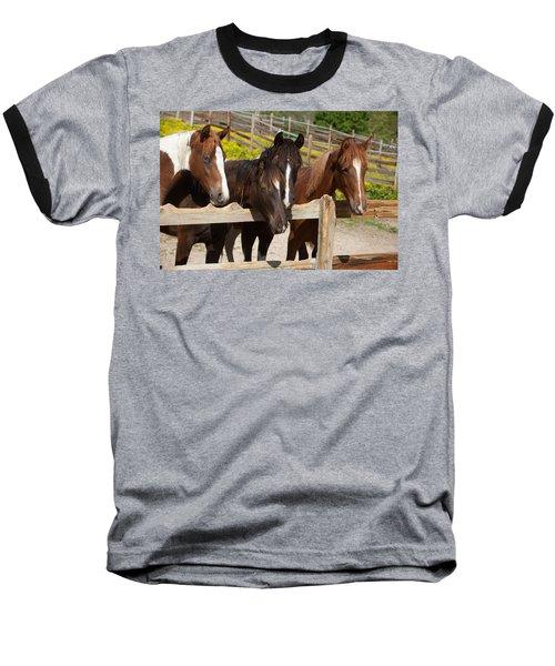 Horses Behind A Fence Baseball T-Shirt