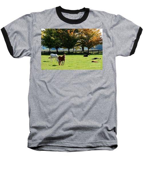 Horses In Fall Baseball T-Shirt