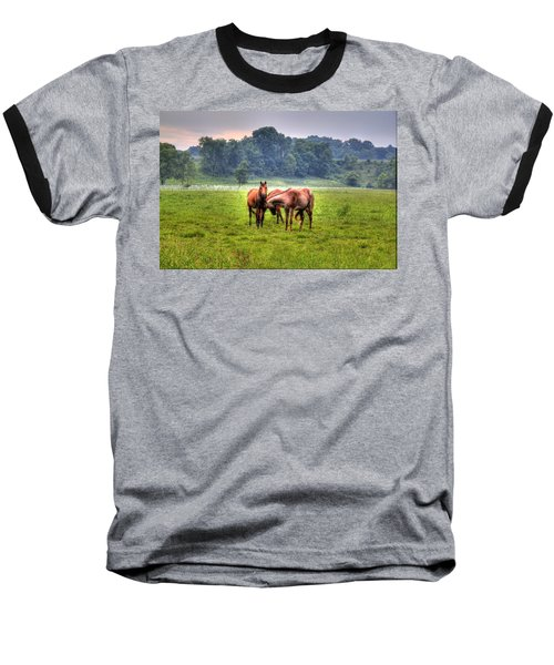 Horses Socialize Baseball T-Shirt