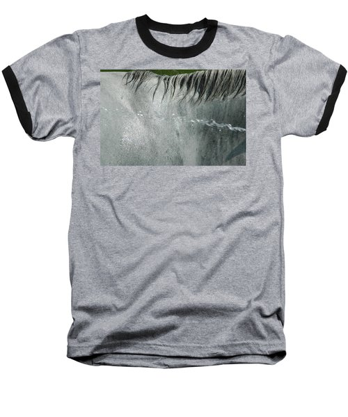 Cooling Down White Horse Baseball T-Shirt by Phil Cardamone