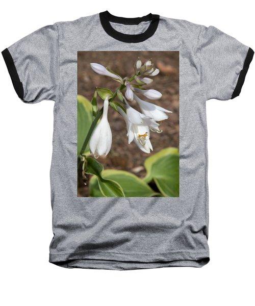 Hosta Baseball T-Shirt