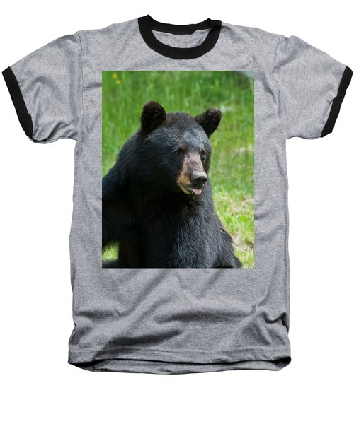 Hot Day In Bear Country Baseball T-Shirt