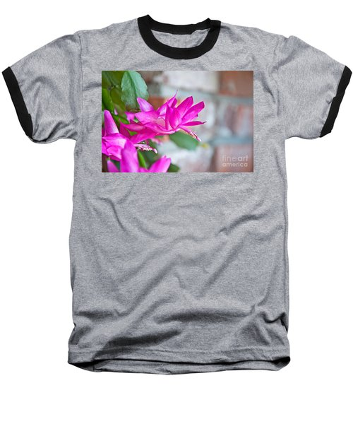 Hot Pink Christmas Cactus Flower Art Prints Baseball T-Shirt by Valerie Garner