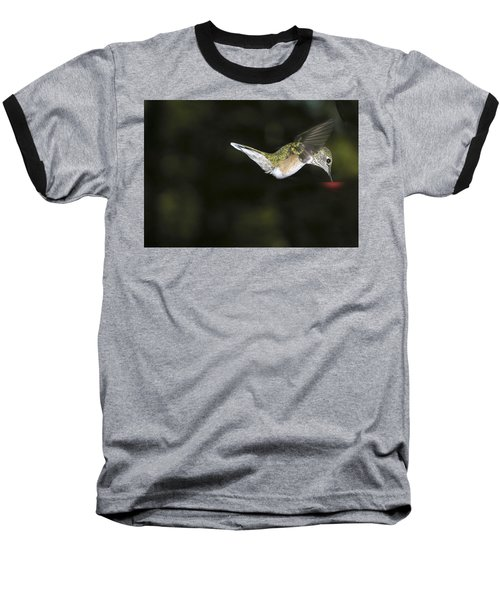 Hovering Beauty Baseball T-Shirt by Ron White