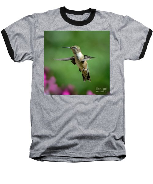 Hovering Hummer Baseball T-Shirt by Amy Porter