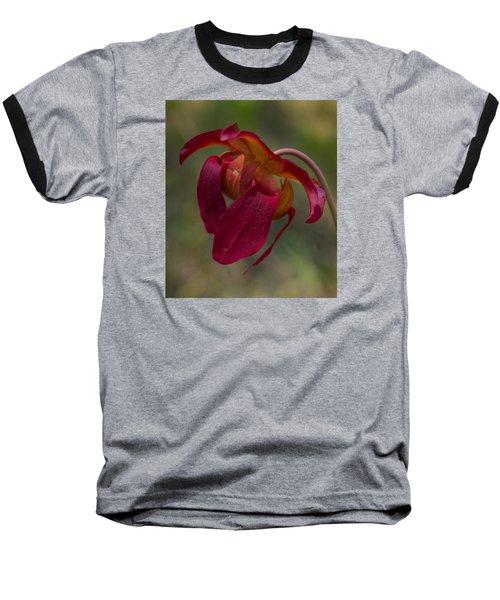 Hovering  Baseball T-Shirt