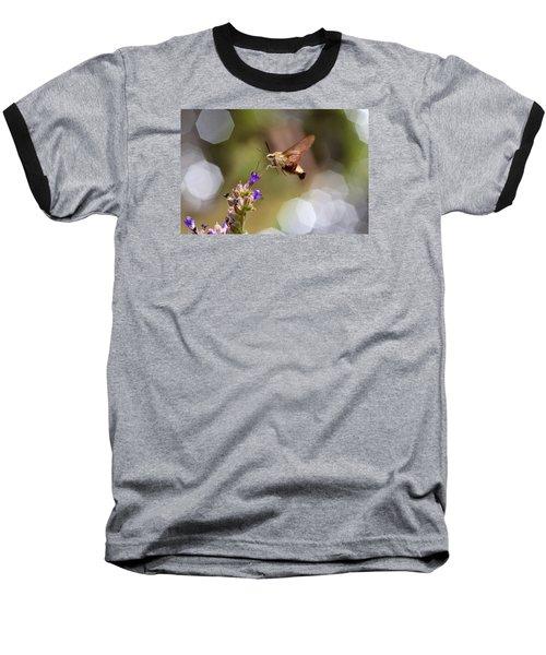Hovering Pollination Baseball T-Shirt