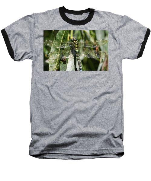 Huge Dragon-fly In Detail. Baseball T-Shirt