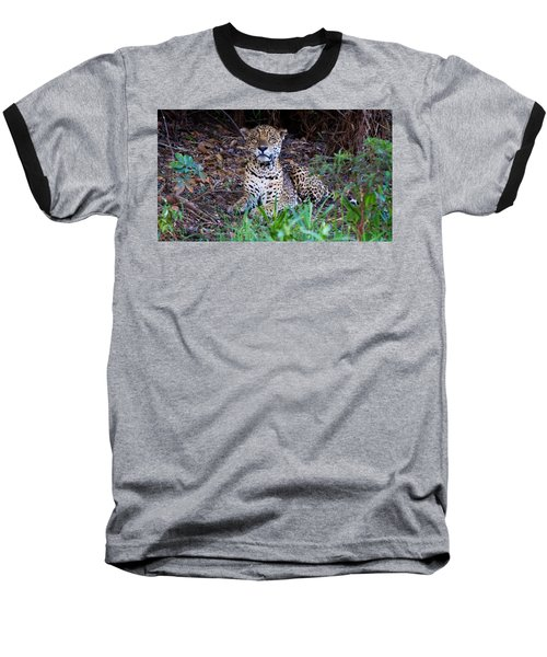 Hugo Waking 2 Baseball T-Shirt by David Beebe