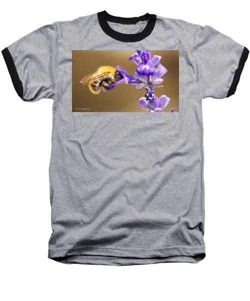 Baseball T-Shirt featuring the photograph Humming Bee  by Stwayne Keubrick