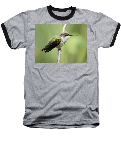 Hummingbird 3 Baseball T-Shirt