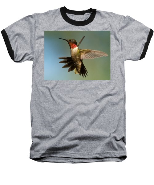 Hummingbird Beauty Baseball T-Shirt