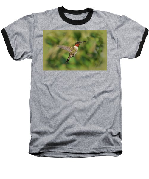 Hummingbird In Flight Baseball T-Shirt