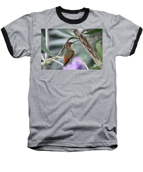 Hummingbird On A Branch Baseball T-Shirt