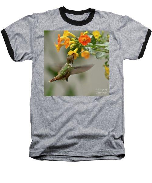 Hummingbird Sips Nectar Baseball T-Shirt by Heiko Koehrer-Wagner