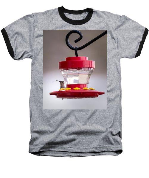 Hummingbird Tongue Baseball T-Shirt