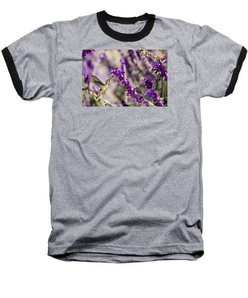 Hummingbird Collecting Nectar Baseball T-Shirt by David Millenheft