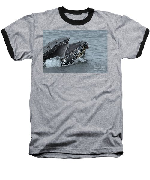 Baseball T-Shirt featuring the photograph Humpback Whale  Lunge Feeding 2013 In Monterey Bay by California Views Mr Pat Hathaway Archives