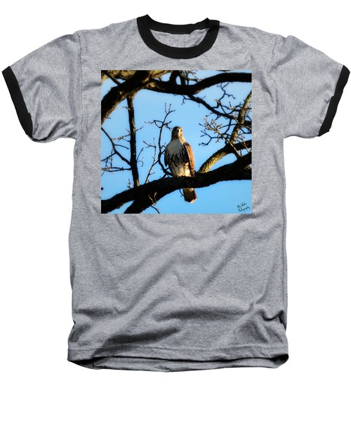 Baseball T-Shirt featuring the photograph Hungry by Ally  White