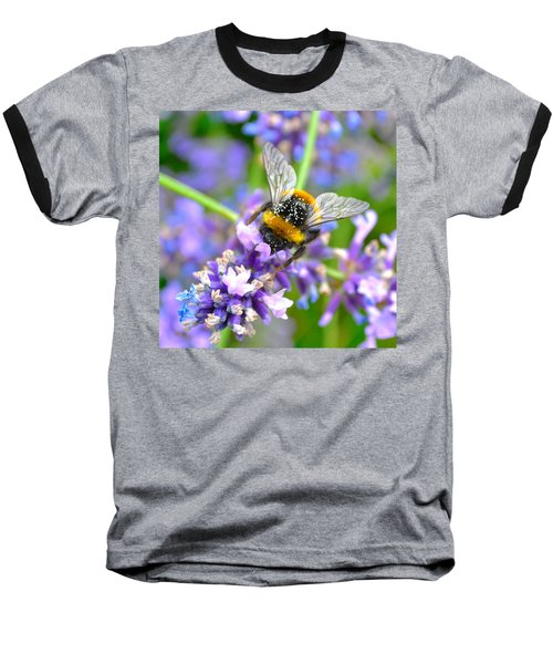 Hungry Bee Baseball T-Shirt