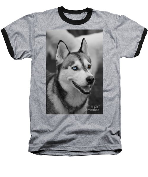 Baseball T-Shirt featuring the photograph Husky Portrait by Vicki Spindler