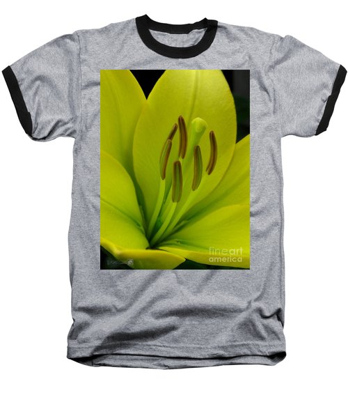 Baseball T-Shirt featuring the photograph Hybrid Lily Named Trebbiano by J McCombie