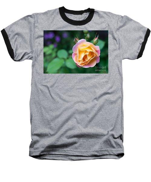 Baseball T-Shirt featuring the photograph Hybrid Tea Rose by Matt Malloy