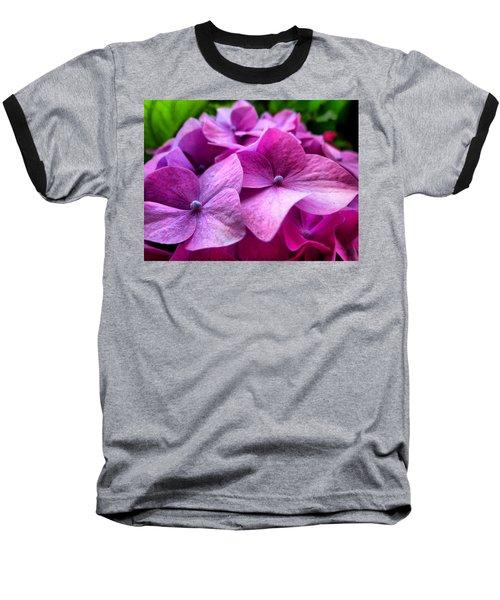 Hydrangea Bliss Baseball T-Shirt