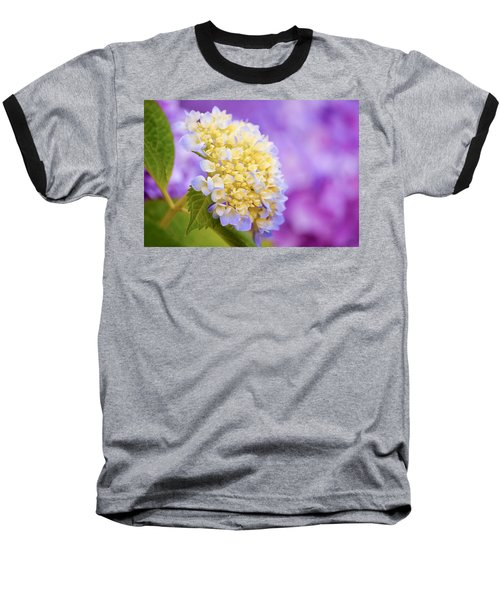 Hydrangea On Purple Baseball T-Shirt